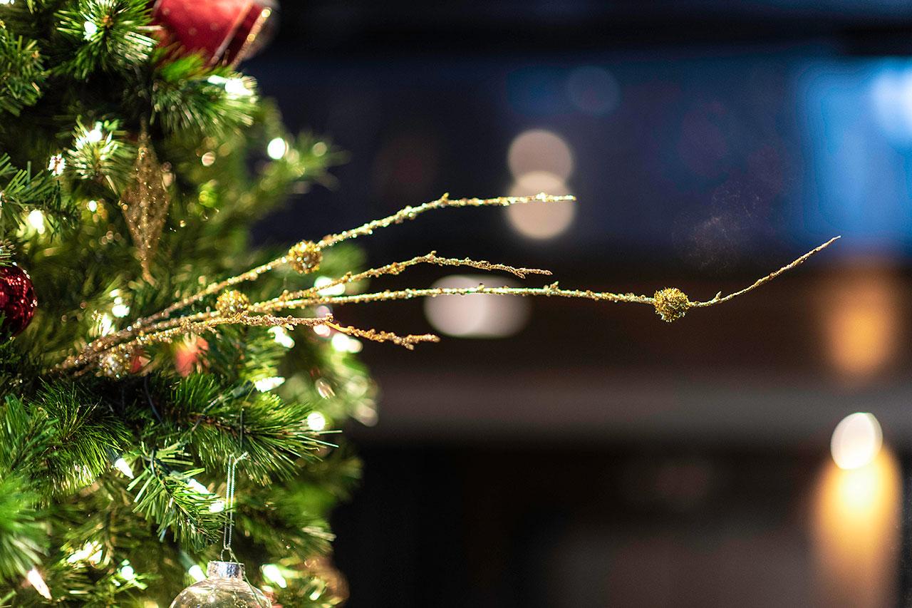 Loews Vanderbilt Christmas Branch